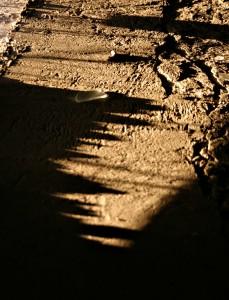 stockvault-glass-and-shadows96833